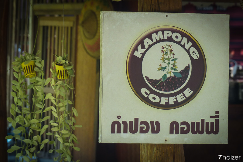 coffee production at Mae Kampong, Chiang Mai