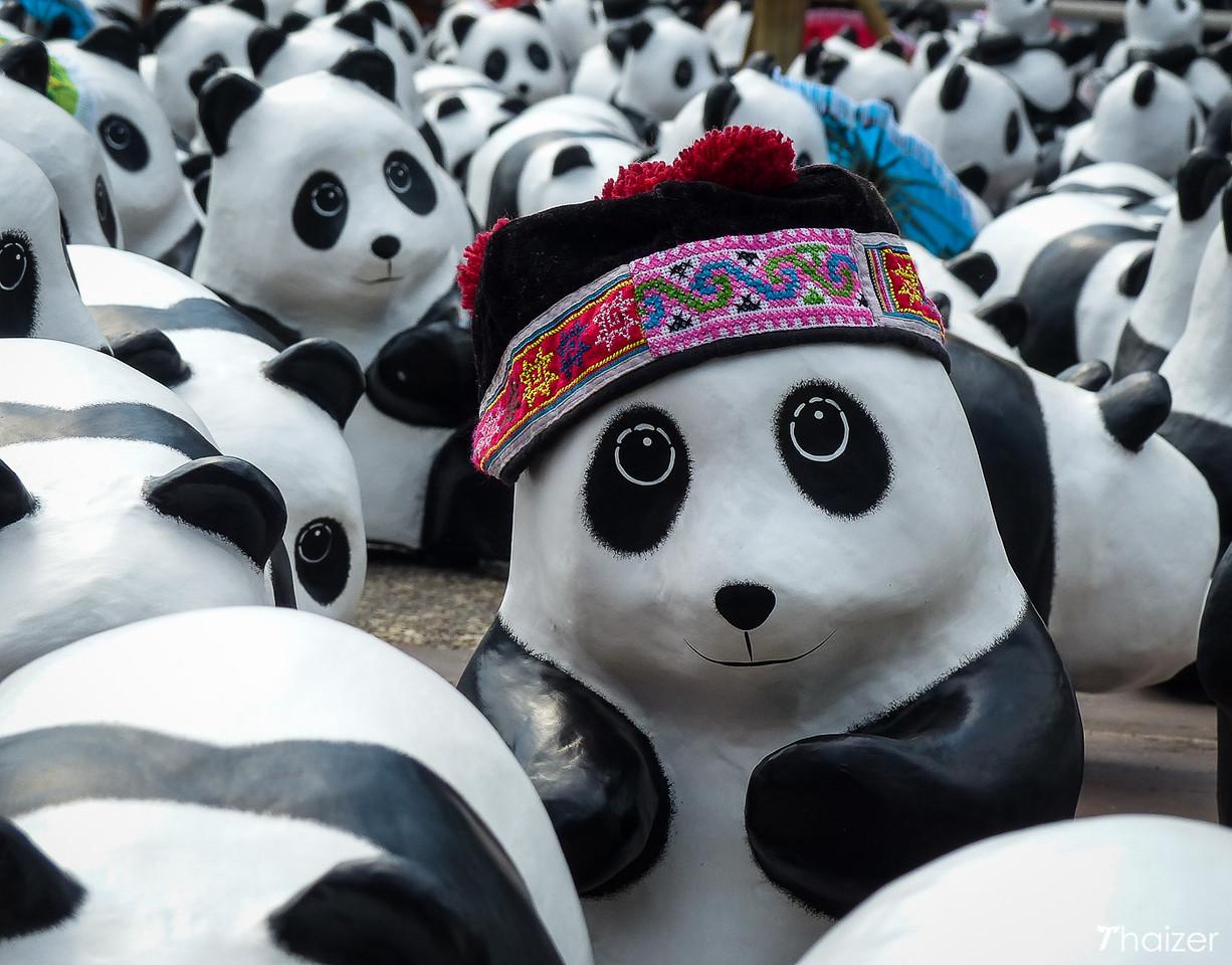 panda hill-tribe