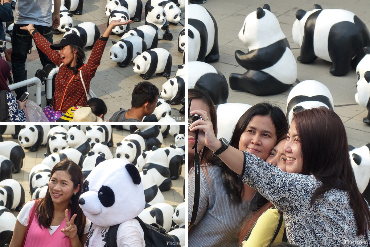 smiles and selfies in front of the 1600 pandas in Bangkok
